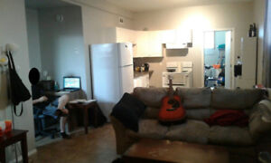 1 Bedroom Basement Suite Available Feb 15