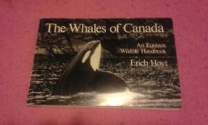 Whales of Canada Book for Sale