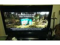 "42"" flatscreen sanyo tv"