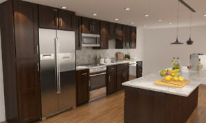 Free shipping promotion- Solid wood kitchen cabinets wholesale