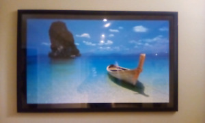 Professionally framed picture $20