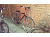 1 bike vintage + 2 bikes hybrid for sale