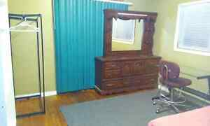 Furnished room next to UNB campus all inclusive $375/month