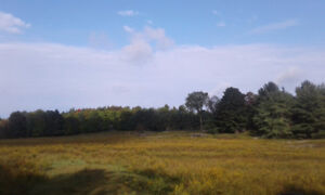 Looking to buy or rent to own land min. 10 acres ++++
