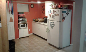 1 bedroom basement suite. Shared laundry all utilty included