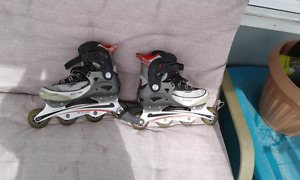 Patin a roullette (roller blade)