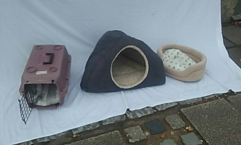 Cat beds and transport carrier
