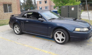 Convertible Mustang For Sale
