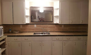 Lower suite in town of VEGREVILLE for rent Strathcona County Edmonton Area image 2