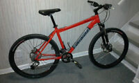 2008 Specialized Rockhopper