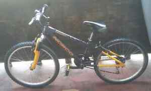"Norco ""Detonator"" Mountain Bike (12.5"")"