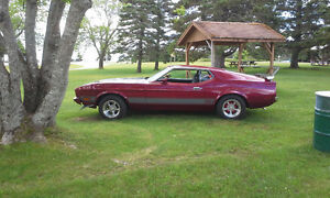 1973 Ford Mustang Coupe (2 door) looking for a 4 speed linkage