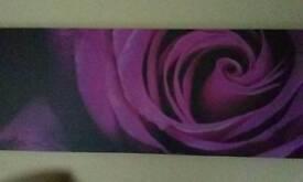 purple rose canvas