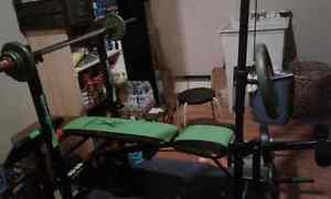 Exercise bench with leg extensions