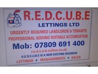 REDCUBE LETTINGS AGENCY URGENTLY REQUEST LANDLORDS AND TENANTS