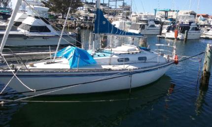 VIKING 30 monohull yacht