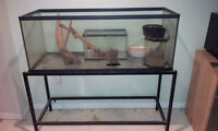 Big 60 Gallon Tank with Stand - Must Go!