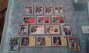 Hockey Cards 1970/80s