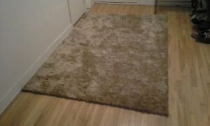 BEAUTIFUL AREA RUG - EXCELLENT CONDITION!!