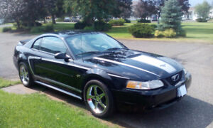 2000 Mustang GT (Sell/Trade)