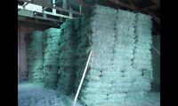 SMALL SQUARE BALES HAY AND STRAW FOR SALE