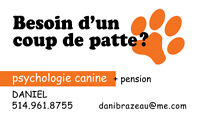 BESOIN D'UN COUP DE PATTE?  (psychologie + dressage + pension)