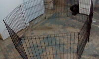 Kennel/ cage