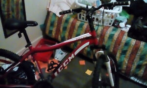 Ccm incline bike (reduced price) special 24,speed