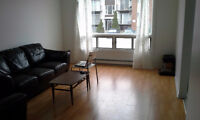 VERY LARGE 2 BED ROOM FOR RENT