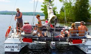 Croisière de catamaran de  luxe et sportive