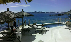 Beach Condo in Acapulco, Mexico. OPPORTUNITY BEAUTIFUL Kitchener / Waterloo Kitchener Area image 9