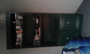 Green shelving unit with lower cabinet cupboards