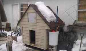 Insulated Dog House $200 negotiable