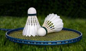 Pegasus Badminton Club - Looking for players