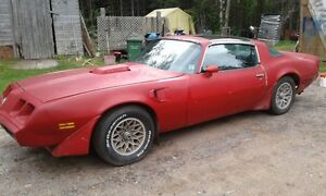 For sale 1981 Trans am needs resto (solid)