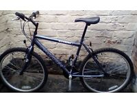 Falcon storm mountain bike in excellent condition like new.