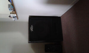 18in peavey bass cabinet for sale.
