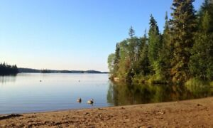 UNRESERVED AUCTION - 4 UNDEVELOPED LAKE FRONT LOTS - Manitoba