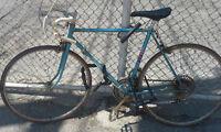 CCM Targa 10 Vintage Road Bike