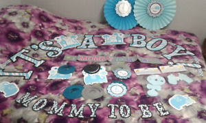 Boy Baby Shower/Gender Reveal Party City Decorations