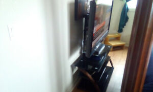 "46"" Sony LCD TV and z-line design swivel stand"