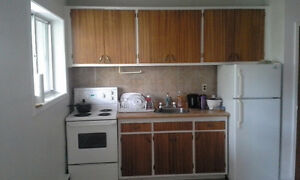 Sublet 1 Bedroom Apartment Downtown-Significantly Reduced Price