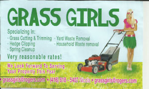 Super grass cut and trimmed starting from $30.  Spring Clean-Up!