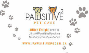 Pawsitive Pet Care is Hiring a Part Time Dog Walker & Pet Siter