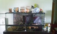 xtra large wide reptile set up