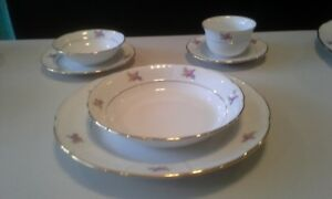 8 place setting Fine Bohemian China