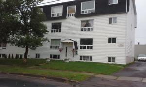 sunny 2bdrm apartment