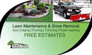 Landscaping lawn grass cutting yard fall clean up gutter clean Windsor Region Ontario image 1