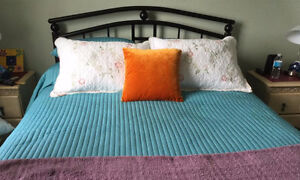 Queen Bedspread (BLUE/GREEN) $20.00  & 2 Pillows $20.00