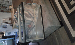 Fish tank and filter for sale